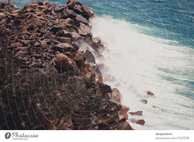Begegnung Ferien & Urlaub & Reisen blau Wasser Sommer Erholung Meer ruhig Freude Strand Umwelt außergewöhnlich Stein braun Freizeit & Hobby Wellen fantastisch