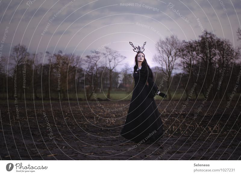 Herbst Karneval Halloween feminin Frau Erwachsene 1 Mensch Subkultur Umwelt Natur Landschaft Feld dunkel Farbfoto Außenaufnahme Ganzkörperaufnahme Vorderansicht