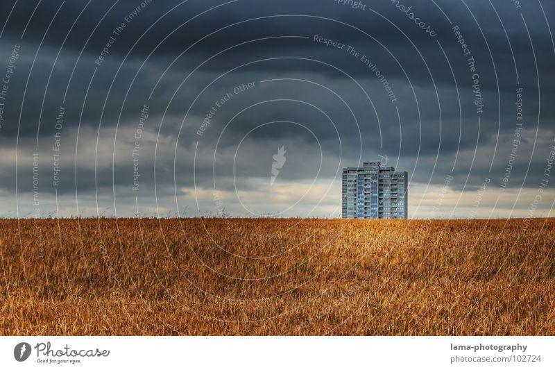Einsamer Riese II Himmel Natur blau Wolken Einsamkeit Haus Ferne Herbst Wiese kalt Wege & Pfade Gebäude Regen Feld Wind gold
