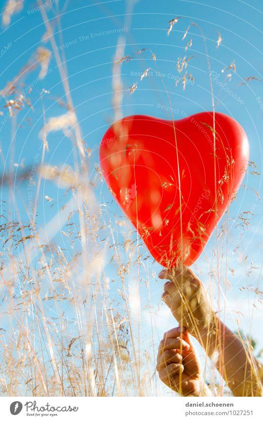 wahre Gefühle Hand Wolkenloser Himmel Sommer Schönes Wetter Gras Wiese Luftballon Herz blau rot Glück Liebe Verliebtheit Partnerschaft mehrfarbig Sonnenlicht