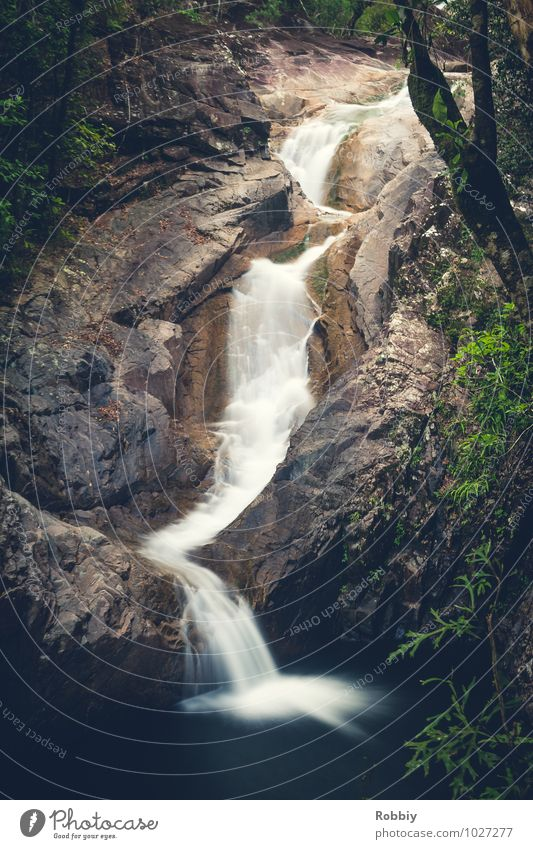 Jusque-là beaucoup d'eau coule de la montagne Natur Wasser Urwald Berge u. Gebirge Bach Fluss Wasserfall Oase Flüssigkeit natürlich Idylle Gedeckte Farben