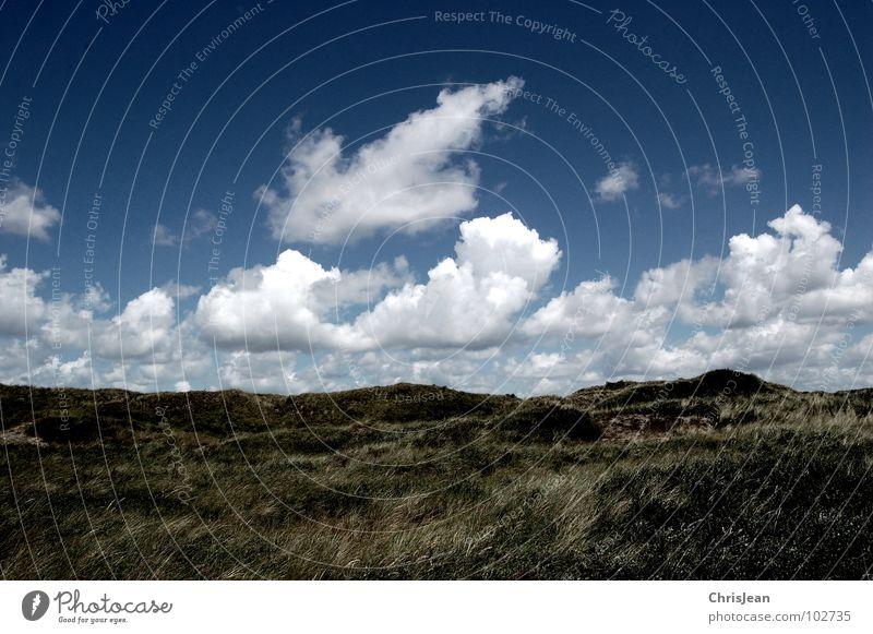 Dünenlandschaft Natur Himmel Meer grün blau Pflanze Sommer Strand Wolken dunkel Gras Sand Luft Küste Wind Wetter