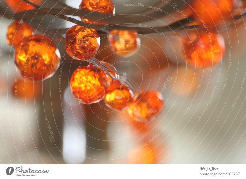 orange_klein_rund_kostbar schön orange Kunst klein rund Kultur Schmuck Perle Kette Kostbarkeit