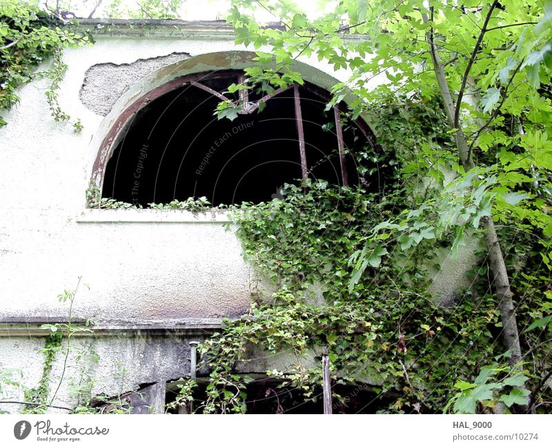Im Dornröschenschlaf alt Haus Architektur verfallen