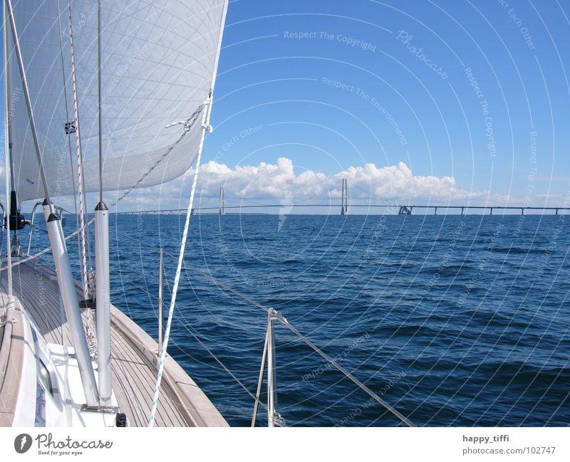 Segeln in Dänemark Wasser schön Himmel weiß Meer blau Sommer Freude Ferien & Urlaub & Reisen ruhig Wolken Ferne Erholung Freiheit See Wärme