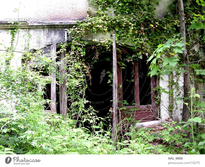 Im Dornröschenschlaf 1 Haus Einsamkeit Architektur Tür