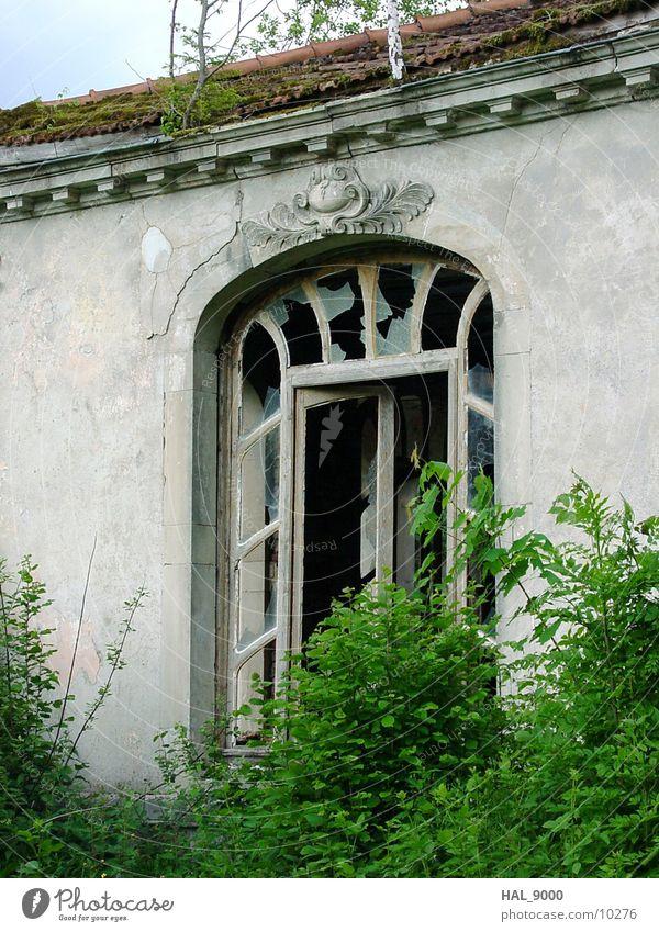 Verlassene Trinkhalle Architektur Jugendstil Tür Fenster verfallen verwachsen