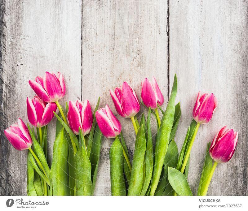 Pink tulpen auf holztisch von vicuschka ein lizenzfreies for Innenarchitektur einkommen