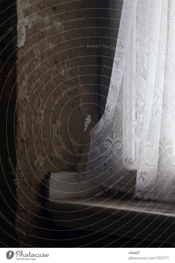 Kleinod klein vergessen Fenster Wand Sims Fensterbrett Gardine Vorhang Licht staubig schädlich retro Erker Osten Zone Sanieren Putz Detailaufnahme alt