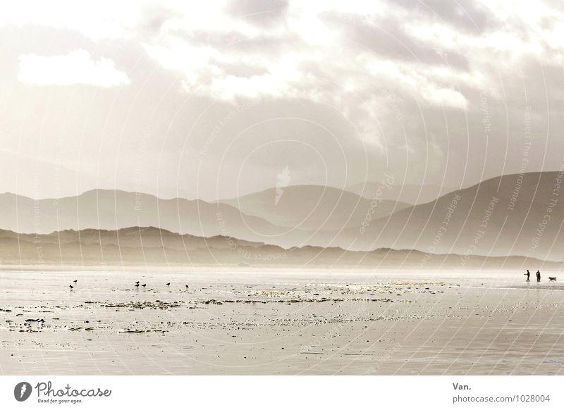unendliche Weiten Hund Mensch Himmel Natur schön Meer Landschaft Wolken Tier Strand Ferne Berge u. Gebirge Küste Freiheit hell Nebel