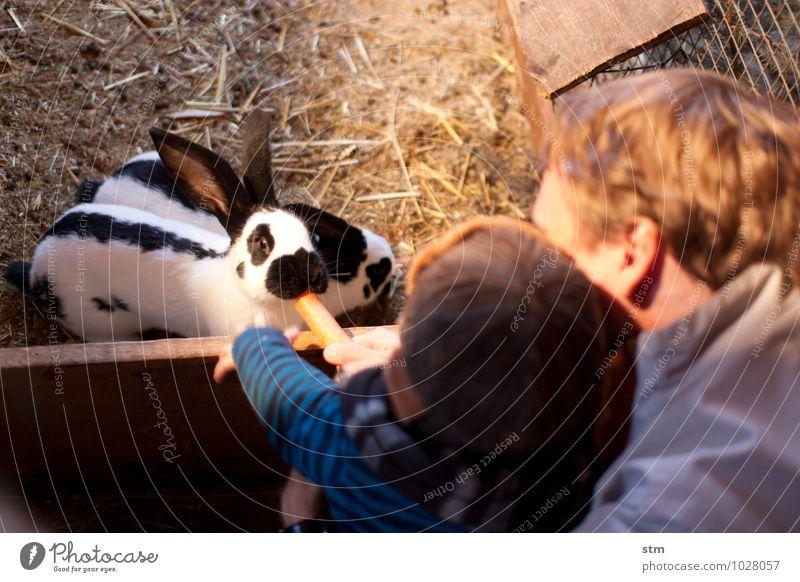 nimmersatt 1&2 Mensch Kind Tier Erwachsene Leben Spielen Gesundheit Essen Familie & Verwandtschaft Kindheit Sauberkeit Hilfsbereitschaft Neugier streichen Appetit & Hunger Haustier