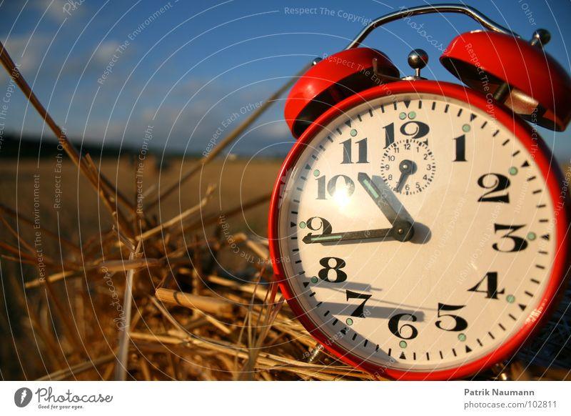 Erntezeit I Himmel rot Feld Zeit Uhr Ziffern & Zahlen Vergänglichkeit Ernte Tiefenschärfe harmonisch Stroh Wecker Strohballen