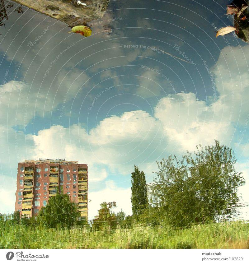 EIGENZITAT Himmel Natur grün schön Pflanze Haus Farbe Wiese Architektur Hochhaus Fluss Niveau Kitsch Surrealismus 08 15