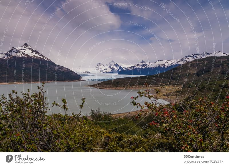Gletscher Perito Moreno in Patagonien von Argentinien Natur Ferien & Urlaub & Reisen Baum Landschaft ruhig Ferne Wald Berge u. Gebirge Umwelt Wiese Freiheit See