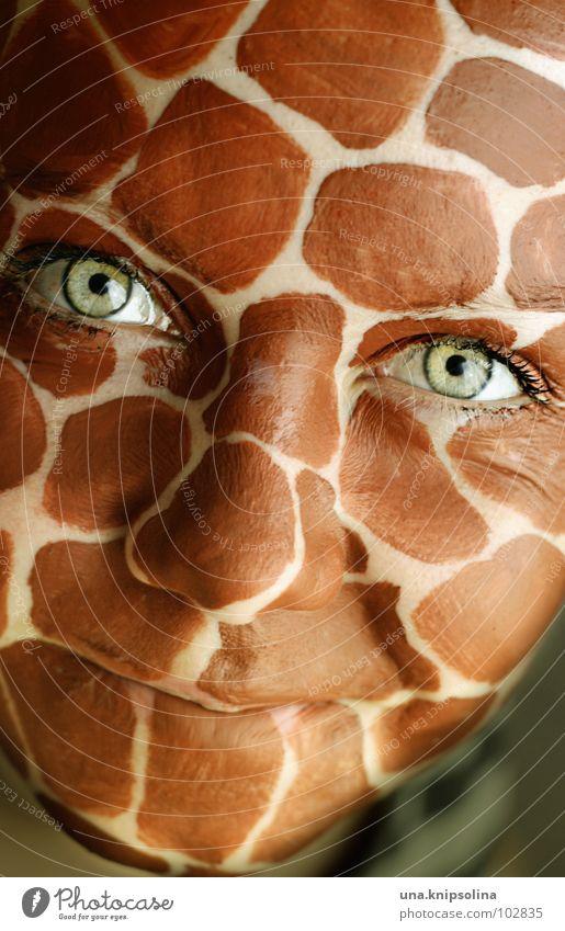 grins Gesicht Auge Mund lachen Freundlichkeit Fröhlichkeit grün Wimpern Afrika intensiv Lachfalte Giraffe wildlife Fleck kulleräugig grinsen Falte Farbfoto