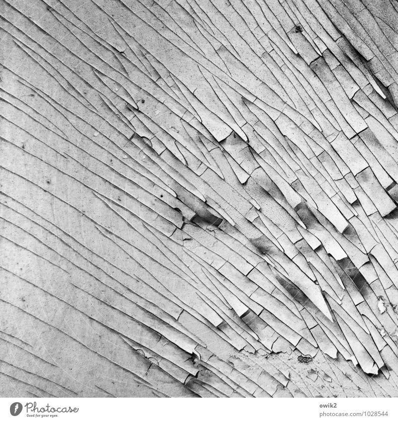 Zeitarbeit alt Farbe Hintergrundbild Linie Zufriedenheit Ordnung Armut Vergänglichkeit Spuren verfallen Verfall Riss bizarr Zerstörung Oberfläche verlieren