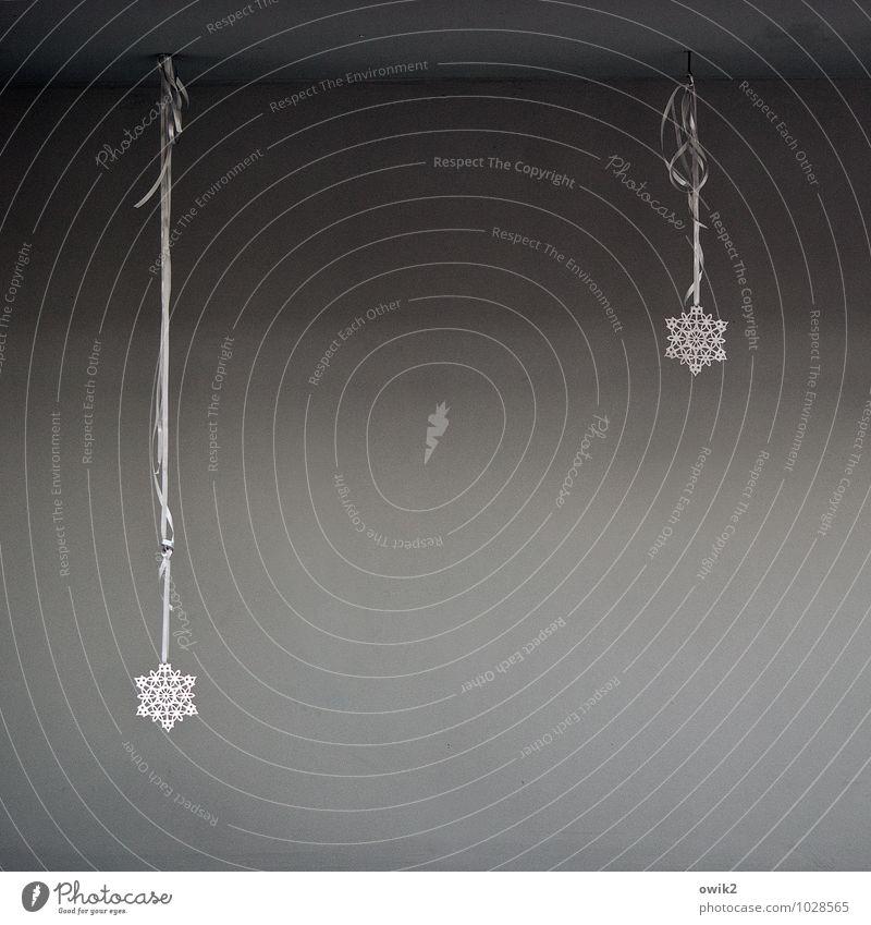 Nach dem Fest ist vor dem Fest Kunst Kultur Dekoration & Verzierung Weihnachtsdekoration Stern (Symbol) hängen dünn elegant fest klein trist grau weiß Stimmung