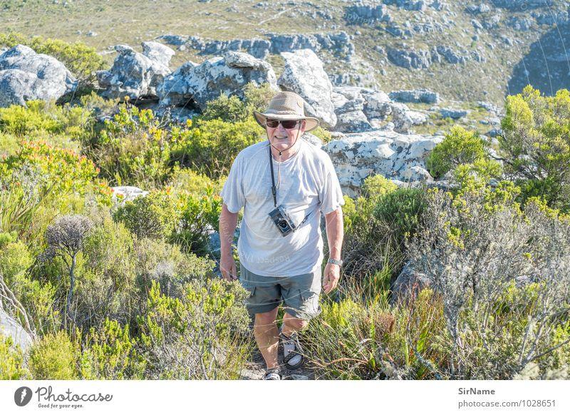 334 Ferien & Urlaub & Reisen Mann Pflanze Sommer Landschaft Berge u. Gebirge Leben Bewegung Senior Gesundheit Freiheit Felsen Sträucher 60 und älter wandern laufen