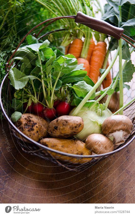 Gemüseallerlei 3 natürlich Gesundheit Lebensmittel dreckig frisch Ernährung Küche lecker Bioprodukte Pilz Verschiedenheit Diät Vegetarische Ernährung Möhre