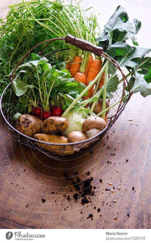 Gemüseallerlei 4 Gesundheit Lebensmittel dreckig Erde frisch Ernährung Küche lecker Bioprodukte Pilz Verschiedenheit Diät Vegetarische Ernährung Möhre Holztisch