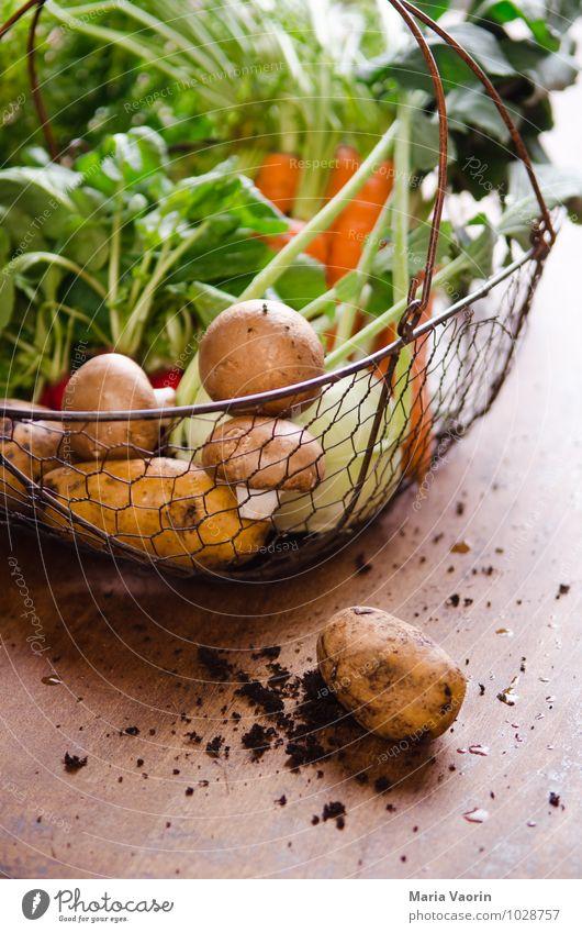 Gemüseallerlei 2 natürlich Gesundheit Lebensmittel Erde frisch dreckig Ernährung lecker Bioprodukte Duft Pilz Abendessen Vegetarische Ernährung Diät
