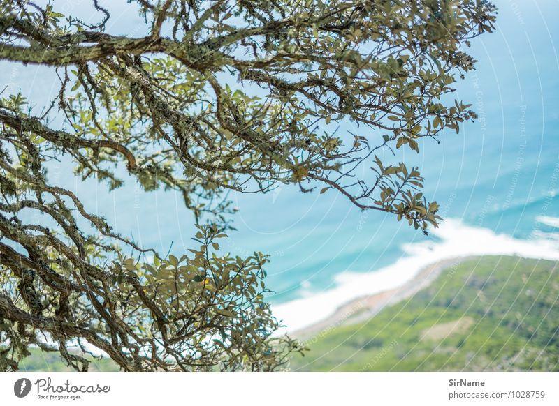 326 Ferien & Urlaub & Reisen Tourismus Ausflug Abenteuer Freiheit Sommer Strand Meer Natur Landschaft Schönes Wetter Baum Berge u. Gebirge Küste Menschenleer