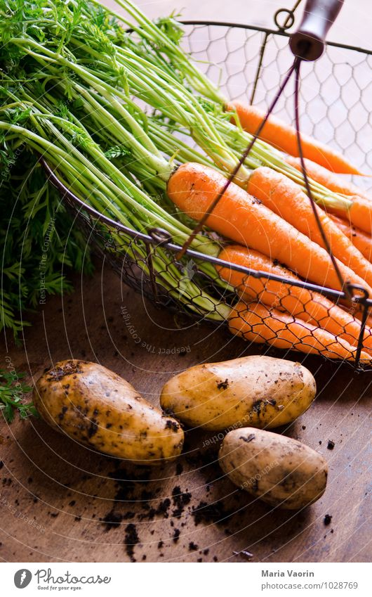 Gartengemüse 3 Lebensmittel Gemüse Essen Bioprodukte Vegetarische Ernährung Diät Gesundheit Gesunde Ernährung Erde frisch lecker natürlich Möhre Kartoffeln