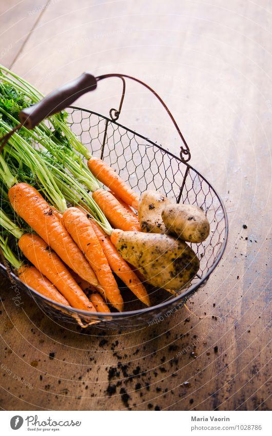 Gartengemüse 2 Gesundheit Lebensmittel dreckig Erde frisch Ernährung Küche Gemüse lecker Bioprodukte Diät Vegetarische Ernährung Korb Möhre Holztisch Kartoffeln