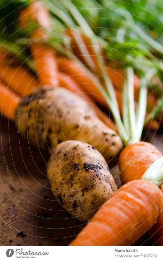 Gartengemüse 5 Gesunde Ernährung natürlich Gesundheit Essen Lebensmittel Erde frisch Gemüse Bioprodukte Diät Vegetarische Ernährung Möhre Holztisch Kartoffeln