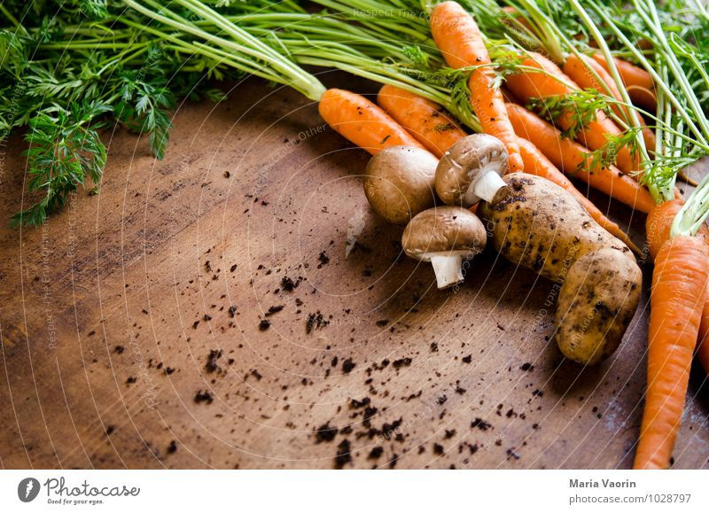 Gemüseallerlei Gesunde Ernährung Gesundheit Lebensmittel dreckig frisch Küche Bioprodukte Duft Pilz Diät saftig Vegetarische Ernährung Nutzpflanze Möhre