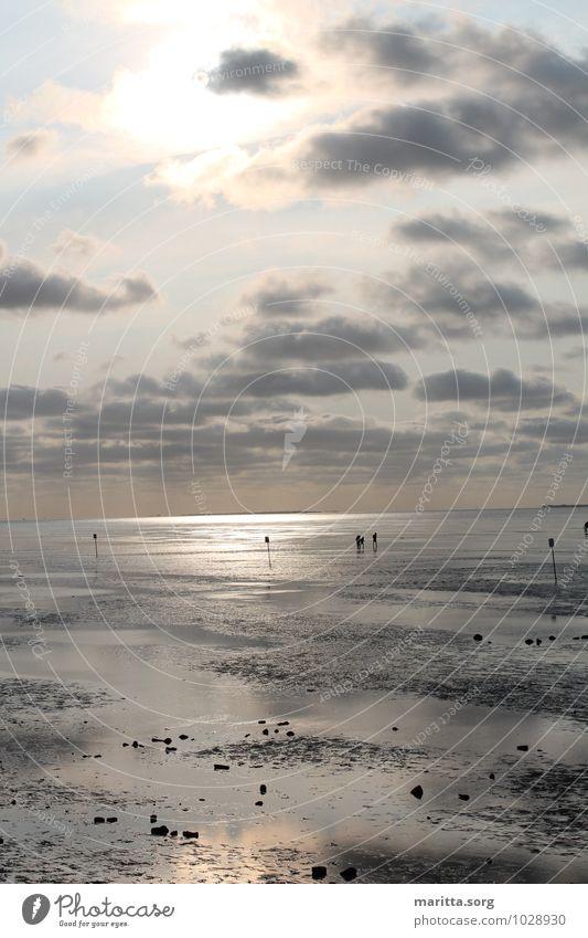 Watt entschleunigt Himmel Natur Wasser Landschaft Wolken Ferne Herbst Gefühle Küste Horizont Urelemente Fernweh Nordsee Leichtigkeit schlechtes Wetter Nordlicht