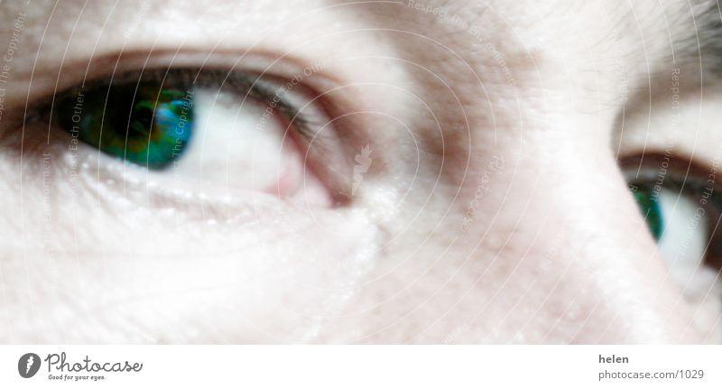beobachten Fototechnik Gesicht Auge