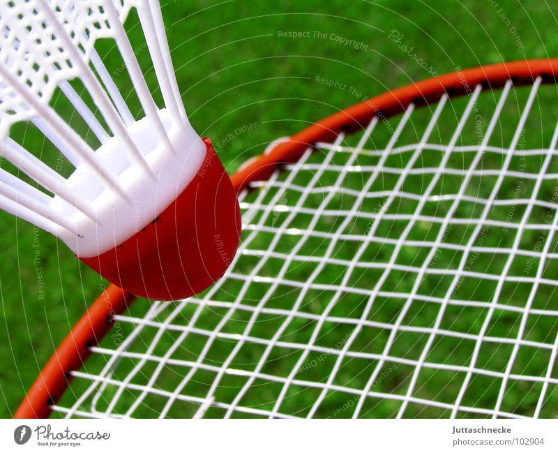 Trampolin Bespannung Badminton grün rot weiß Spielen Spielzeug Sport Federballschläger Ball Außenaufnahme Objektfotografie