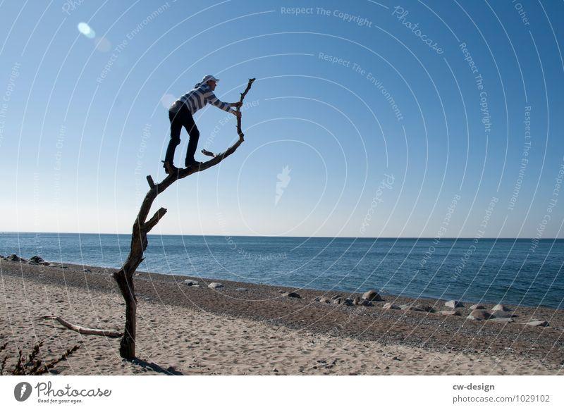 Gute Aussichten Mensch Ferien & Urlaub & Reisen Jugendliche Sommer Wasser Junger Mann Landschaft Baum Erholung Freude Ferne Strand Erwachsene Leben Küste
