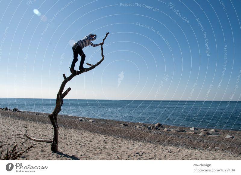 Junger Mann klettert auf alten Baum am Strand und genießt die Aussicht Aussichtsturm Ferien & Urlaub & Reisen Tourismus Farbfoto jugendlicher