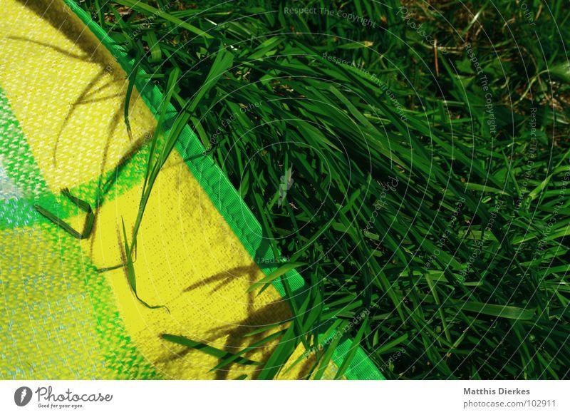 EIN STÜCK SOMMER grün gelb See tauchen Gras Wachstum Liegewiese Wiese braun Sonnenbad Sommer Ecke heiß Physik schön Gute Laune Picknick Nachmittag faulenzen