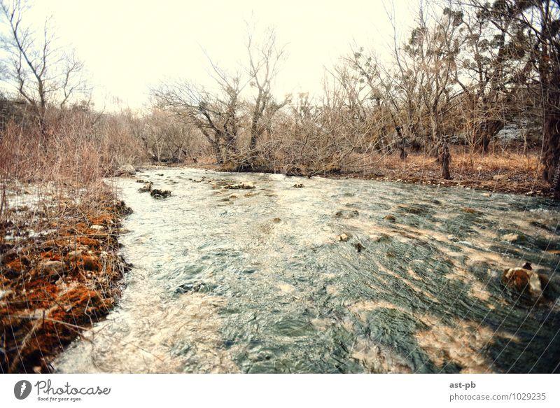 Natur Herbst Fluss Bach