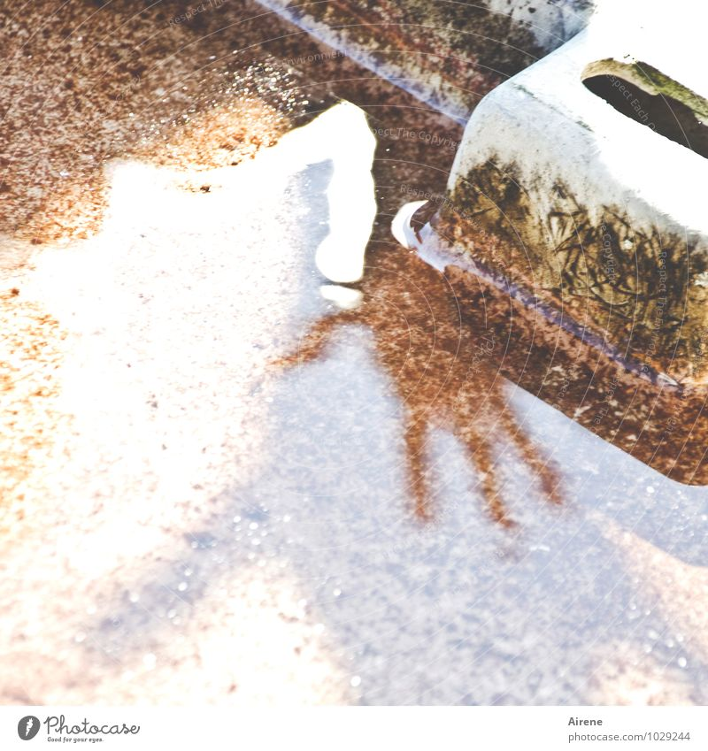 Vierfingermonster weiß Wasser Hand Stein braun Angst gefährlich Beton bedrohlich Finger berühren Todesangst Brunnen gruselig skurril Surrealismus