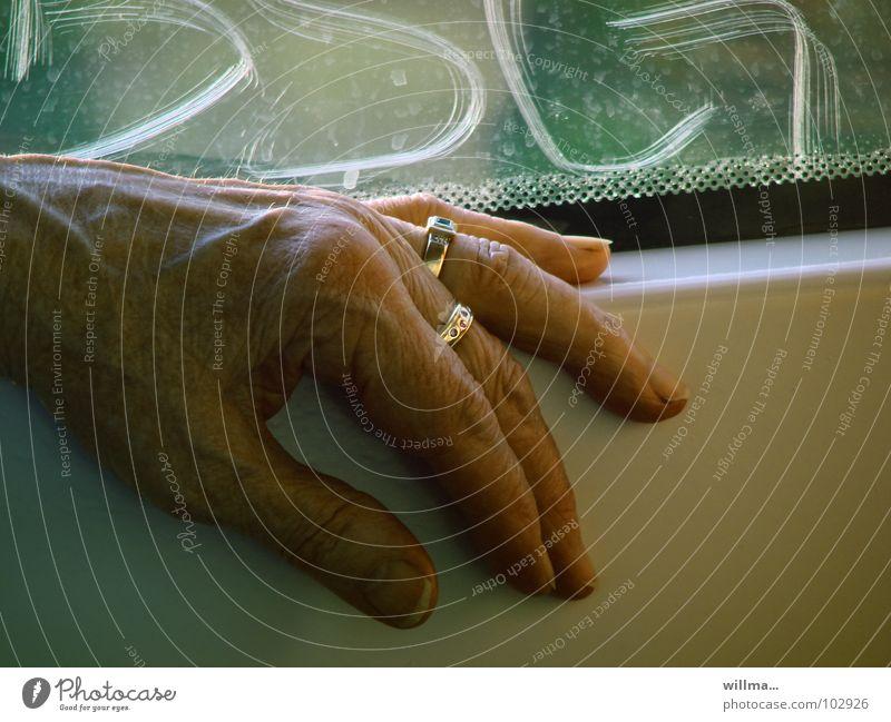 Hand einer Seniorin - scratch Frau alt Erwachsene Leben Lifestyle Finger Vergänglichkeit Weiblicher Senior Falte Hautfalten Spuren Ring Schmuck Ruhestand
