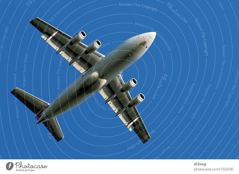 Ab in den Süden Flugzeug Nürnberg Luftverkehr Himmel Ferien & Urlaub & Reisen blau Flughafen Spotting
