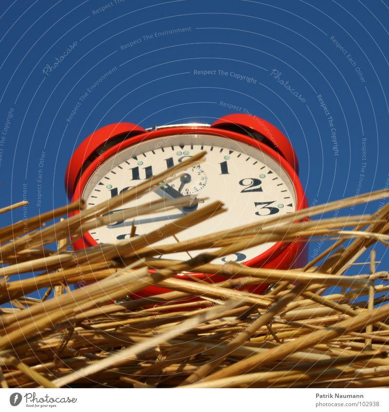 Erntezeit II Himmel blau rot Zeit Uhr Ziffern & Zahlen Vergänglichkeit Landwirtschaft Amerika harmonisch ländlich Stroh Wecker Strohballen
