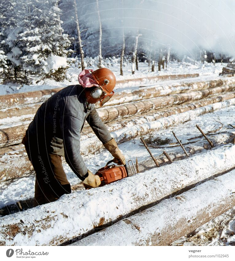 Forstarbeiten weiß Winter Schnee Holz Baum Handwerk Baumstamm Arbeiter Forstwirtschaft Schutzhelm Säge Schutzbekleidung Motorsäge Schutzbrille
