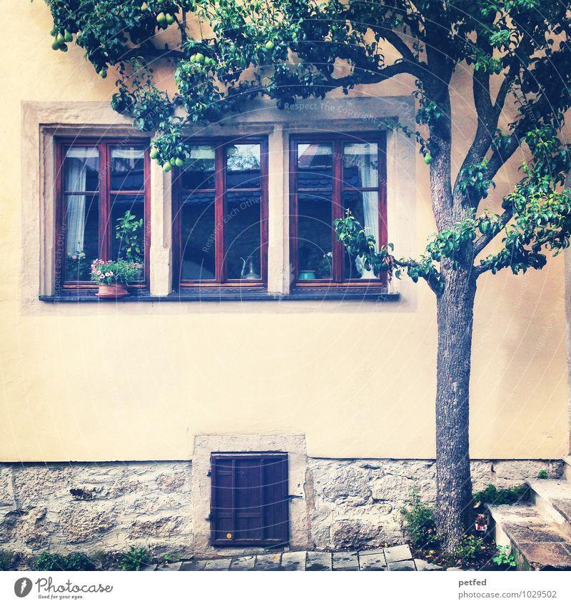 Häusliche Ansichten XII Häusliches Leben Wohnung Haus Baum Altstadt Mauer Wand Treppe Fassade Fenster Tür alt schön einzigartig Idylle Nostalgie Farbfoto