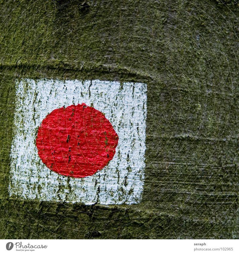 Japan Farbe Baum Farbstoff Wege & Pfade Schilder & Markierungen wandern Hinweisschild Kreis Zeichen Fußweg Symbole & Metaphern Baumstamm malerisch Fahne