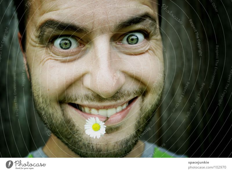 Blumenkind (2) Mann Natur Pflanze Sommer Freude Gesicht Frühling Blüte lustig Mund Zähne Lippen Stengel Bart skurril