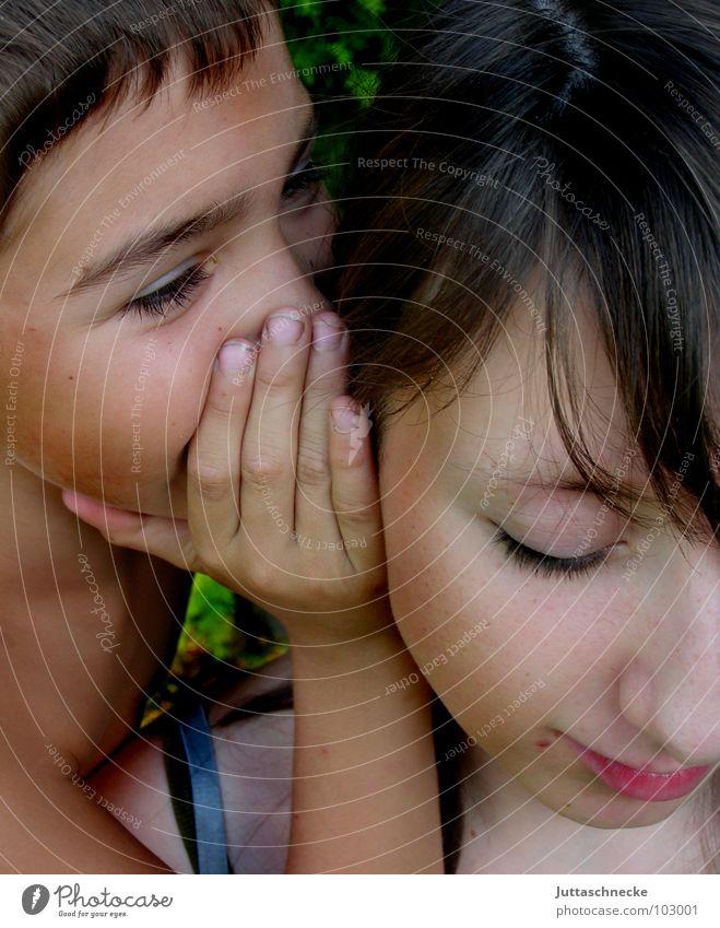 Geheimnis Mensch Kind Hand Mädchen Gesicht Familie & Verwandtschaft sprechen Junge planen Kommunizieren Ohr Vertrauen geheimnisvoll Bruder Schwester Geschwister