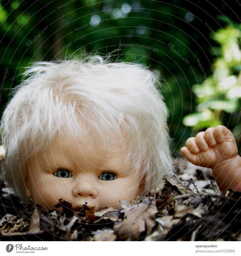 Lost puppet blau Freude Blatt Auge Einsamkeit Haare & Frisuren Angst blond süß bedrohlich Spielzeug gruselig Wildtier niedlich Puppe skurril