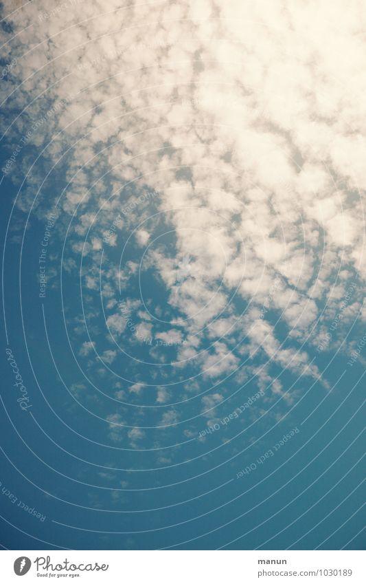 himmlisch Natur Urelemente Luft Himmel Wolken Sonnenlicht Klima Wetter Schönes Wetter Atmosphäre Wolkenformation Wolkenbild authentisch frisch Gesundheit