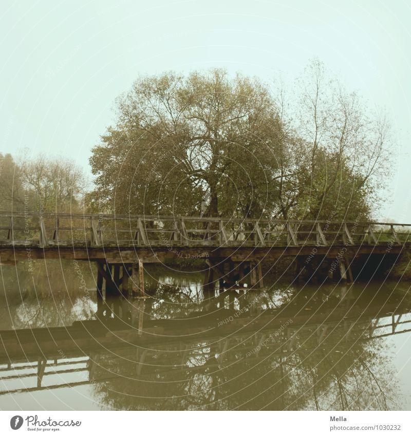Tschüss, liebe Anne! Und nicht alle Brücken niederreißen. ;-) Umwelt Landschaft Wasser Baum Seeufer Flussufer Teich Holzbrücke Wege & Pfade Fußgängerübergang