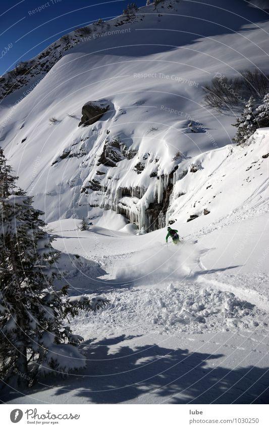 Freerider Natur Landschaft Winter Berge u. Gebirge Schnee Sport Schneefall Tourismus Schönes Wetter Abenteuer Gipfel Schneebedeckte Gipfel Skifahren Skier Wintersport Winterurlaub